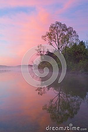 Spring Shoreline at Dawn