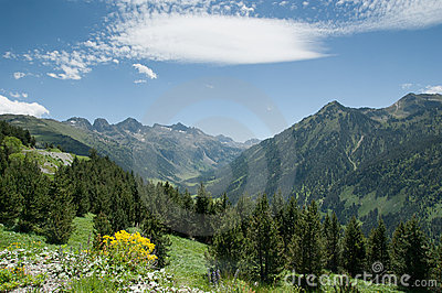 Spring in spanish Pyrenees
