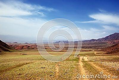 Spring steppe in Kazakhstan