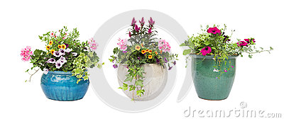 Spring Summer flower pots isolated on white