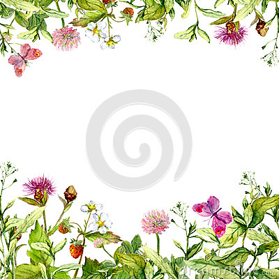 Free Spring, Summer Garden: Flowers, Grass, Herbs, Butterflies. Floral Pattern. Watercolor Royalty Free Stock Image - 75629546