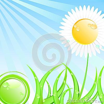 Spring or summer sunny illustration