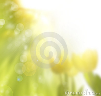 Free Spring Sunny Floral Background Stock Photography - 18329302