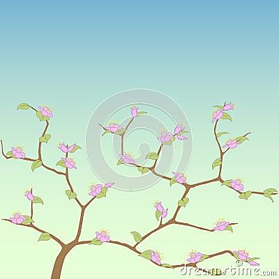 Spring tree.