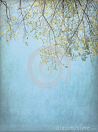 Spring Tree Background