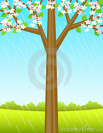 Spring Tree Background/eps