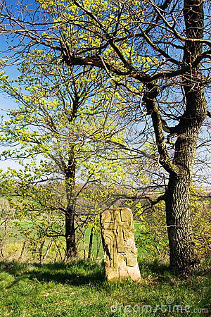 Spring trees and ancient stone tomb
