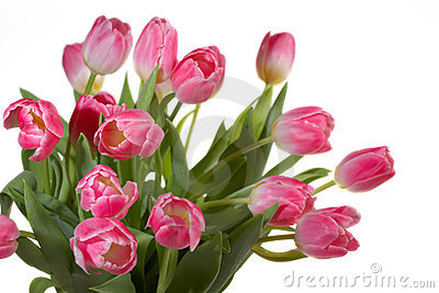 Spring Tulips bouquet