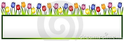 Spring Tulips Flower Banner or Logo