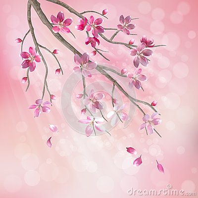 Free Spring Vector Tree Branch Cherry Blossom Flowers Stock Photos - 29068813