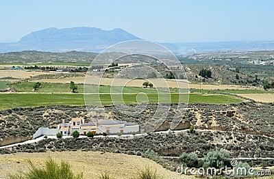 Spring view of Granada