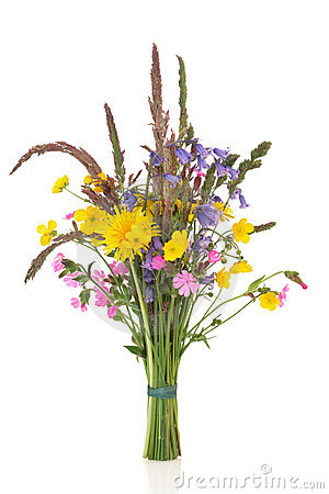 Spring Wildflower Posy
