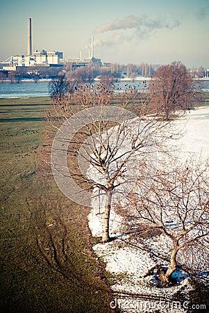 Spring/Winter