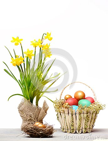 Free Spring Yellow Narcissus, Colorful Easter Eggs Isolated On White Stock Photos - 111353353