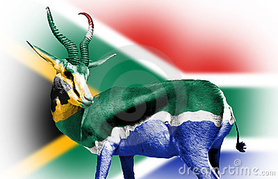 South African Flag Sphere Stock Photography - Image: 11617932