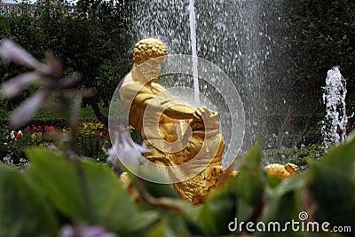 Springbrunn i den Petrodvoretz trädgården