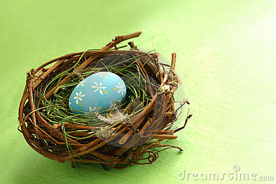 Springtime Egg in Nest
