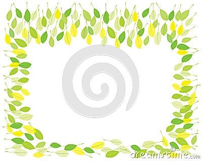 Springtime leaves