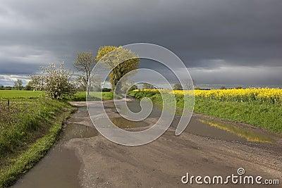Springtime rains