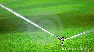 Sprinkler on Grass