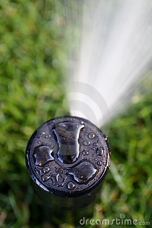 Free Sprinkler Head Spraying Royalty Free Stock Photography - 5480917