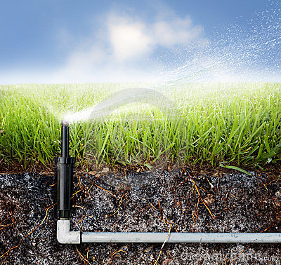 Free Sprinkler Lawn Stock Photo - 15607240