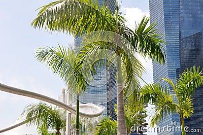 Sprinkler and palm tree (Singapore)