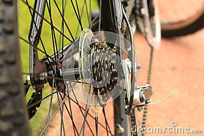 Sprocket of bicycle