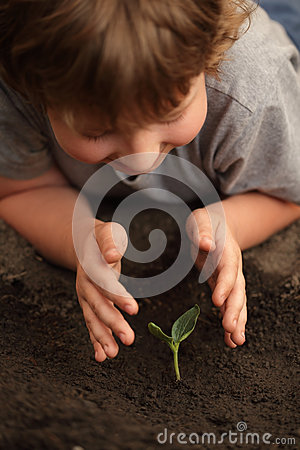 Free Sprout In Children Hand Royalty Free Stock Image - 25102616