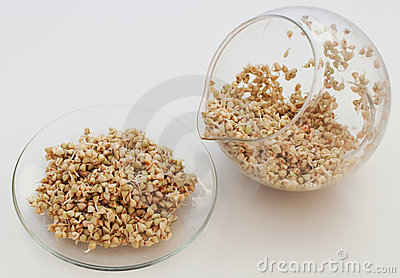 Sprouts and a very useful buckwheat