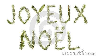 Spruce twigs forming the phrase  Joyeux Noel
