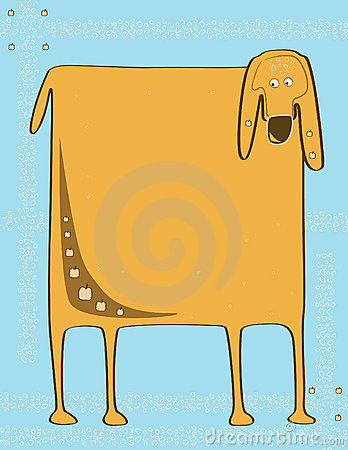 Square dog