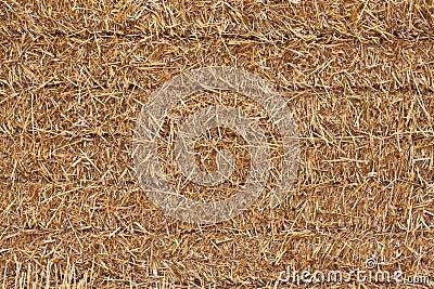 Square hay bale - closeup