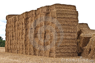 Square hay bales stacked up
