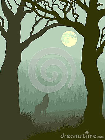 Free Square Illustration Of Wolf Howling At Moon. Royalty Free Stock Photography - 32230867