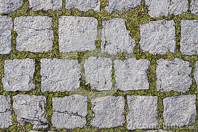 Square stones texture with grass