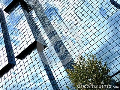 Square Window Building 5