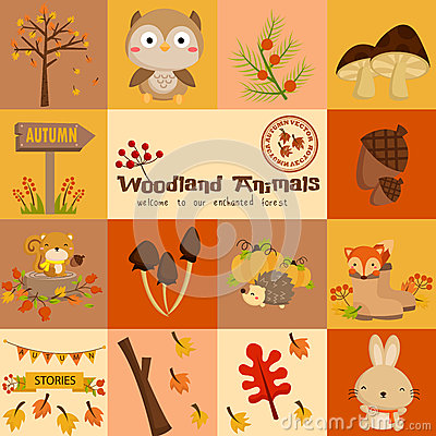 Free Square Woodland Animal Autumn Vector Set Stock Photo - 49685640