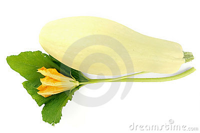 Squash with flower