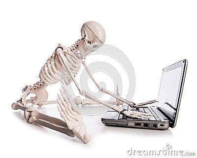 Squelette travaillant sur l ordinateur portable