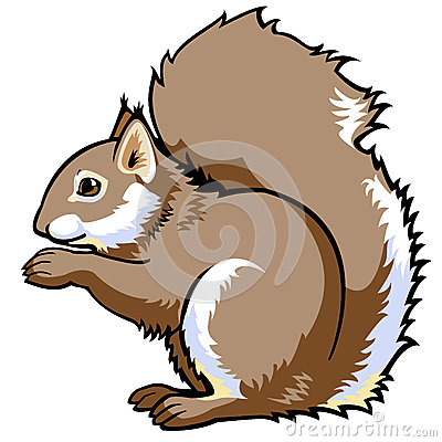 Free Squirrel Royalty Free Stock Image - 27196596