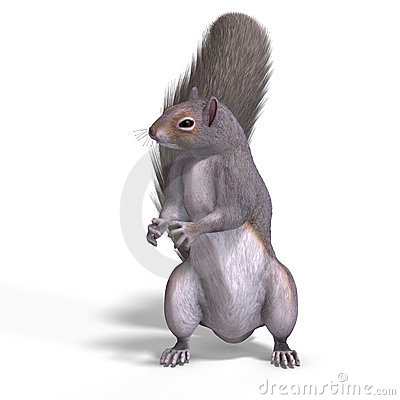 Squirrel 3D Render