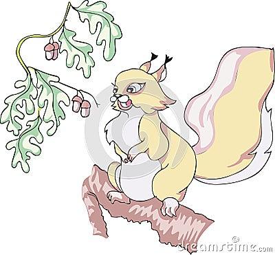 Squirrel with acorns