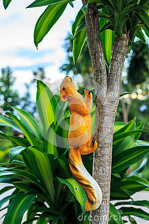 Squirrel doll on a tree
