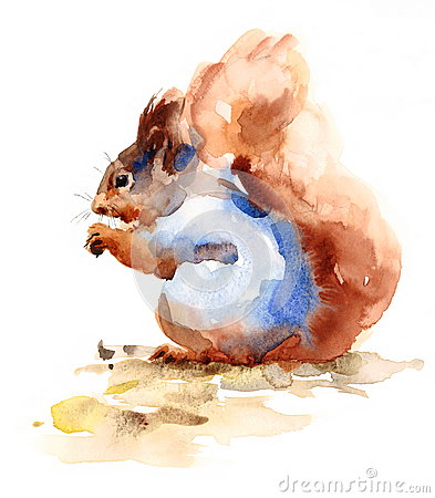 Free Squirrel Eating Nuts Wild Animal Winter Illustration Hand Painted Royalty Free Stock Photography - 77464307