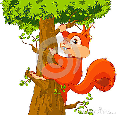 Free Squirrel On The Tree Royalty Free Stock Photography - 46153877