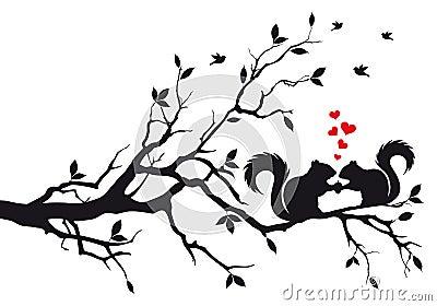 Squirrels on tree branch