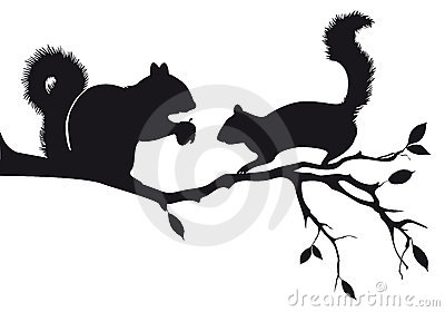 Squirrels on tree, vector