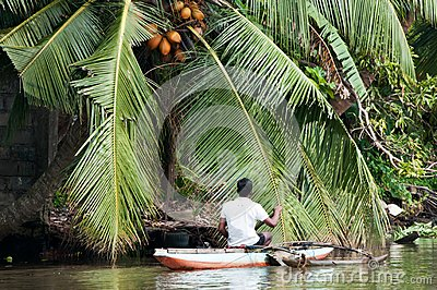 Sri Lankian fisherman in a boat on a river Editorial Photo