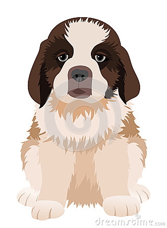 St Bernard puppy. Vector illustration.